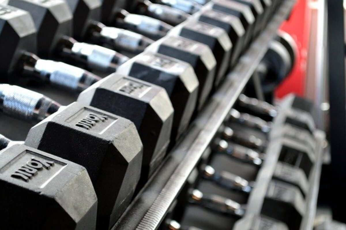 Black, York Dumbbells Stored on a Rack at the Gym