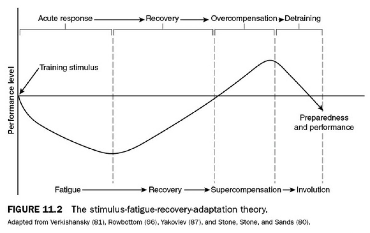 Stimulus Fatigue Recovery Adaptation Theory Diargram